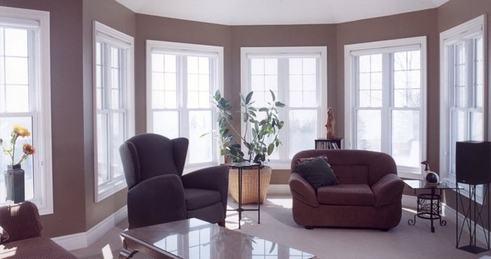 Single and Double Hung Windows